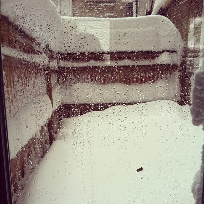 That's like two feet of snow, covering my patio and my tulips